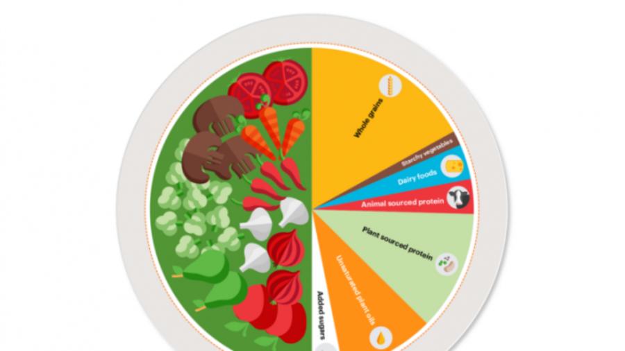 Planetary Health Plate