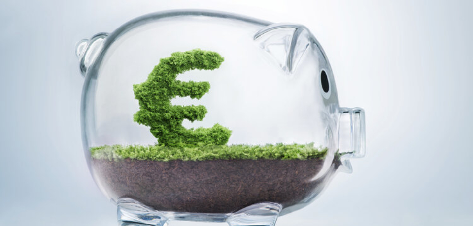 Piggy bank savings concept with grass growing in shape of Euro sign