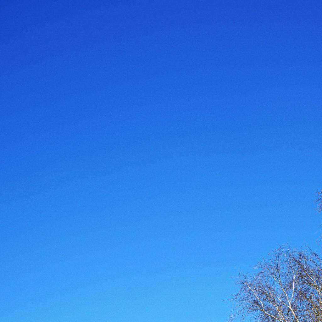 Pieter Boussemaere schrijft over blauw