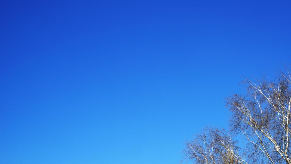 K1MC5599_1690s 200326 Latem_blauwe_lucht