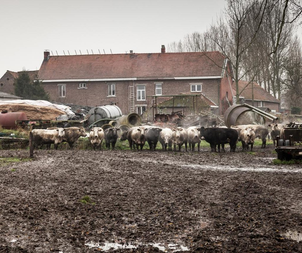 Vlaams Bouwmeester over Anders gaan boeren