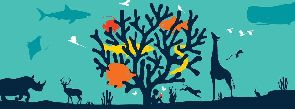 3 maart: Wereld Wildlife Dag  van de Verenigde Naties