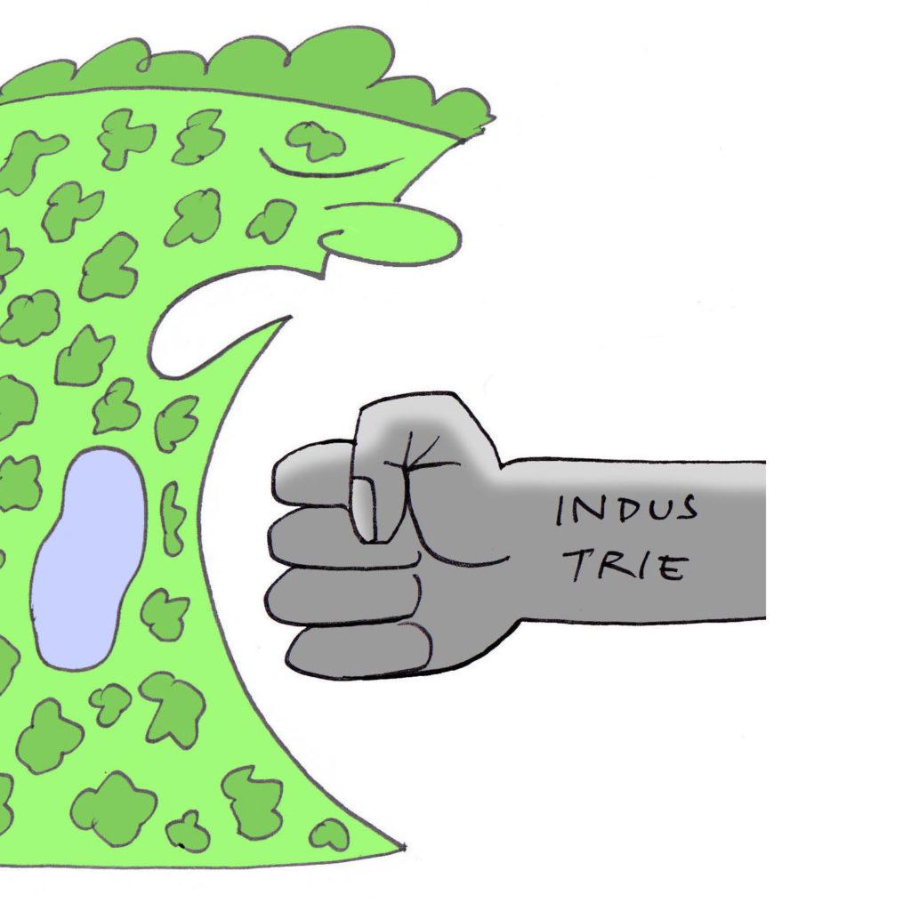 De Groene Delle  –  23 ha natuurgebied verloren!