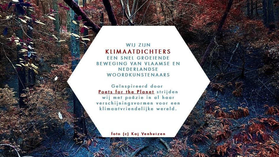 Maak kennis met de klimaatdichters
