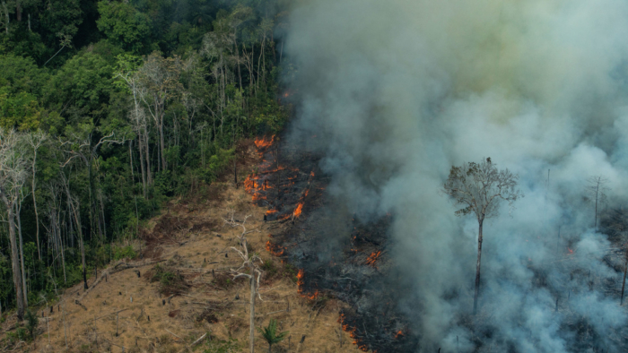 CANDEIRAS DO JAMARI, RORAIMA, BRAZIL: Aerial view of a large burned area in the city of Candeiras do Jamari in the state of Rondonia. (Photo: Victor Moriyama / Greenpeace)