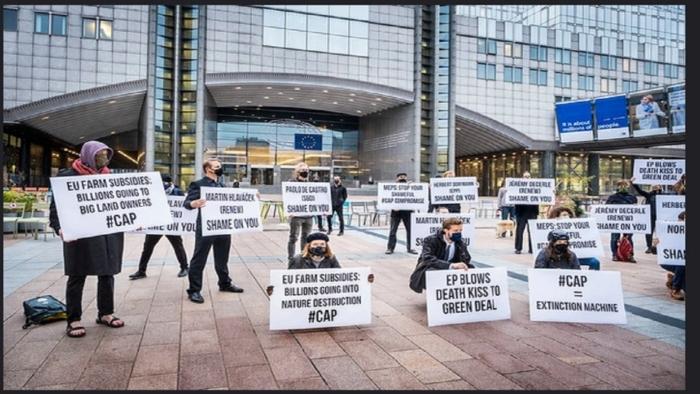 Flashmob CAP, Dieter Telemas AABB