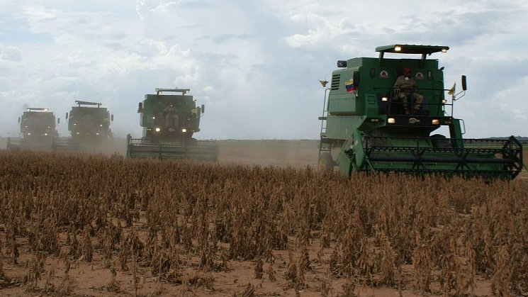 België, Europees koploper 'duurzame' soja?