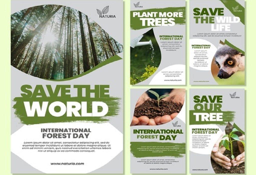 Internationale Bosdag – Tijd voor Tiny Forests in je buurt!