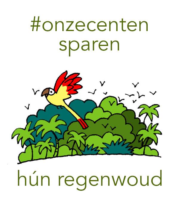 oc_regenwoud