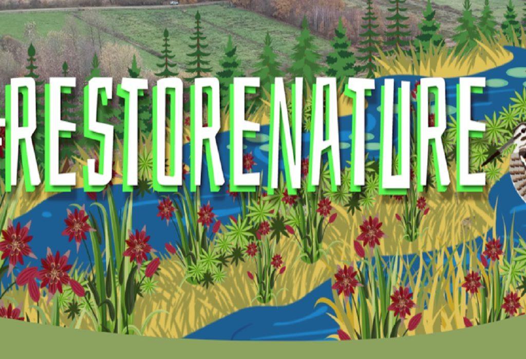 Natuurorganisaties willen straffe Europese natuurherstelwet. Teken mee voor #RestoreNature!
