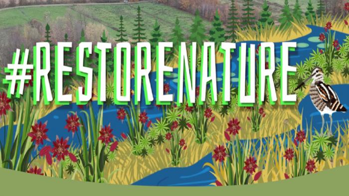 restorenature_email_signature