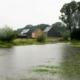 MG_1461Zevenhuizen-Lint_helder_1230x691
