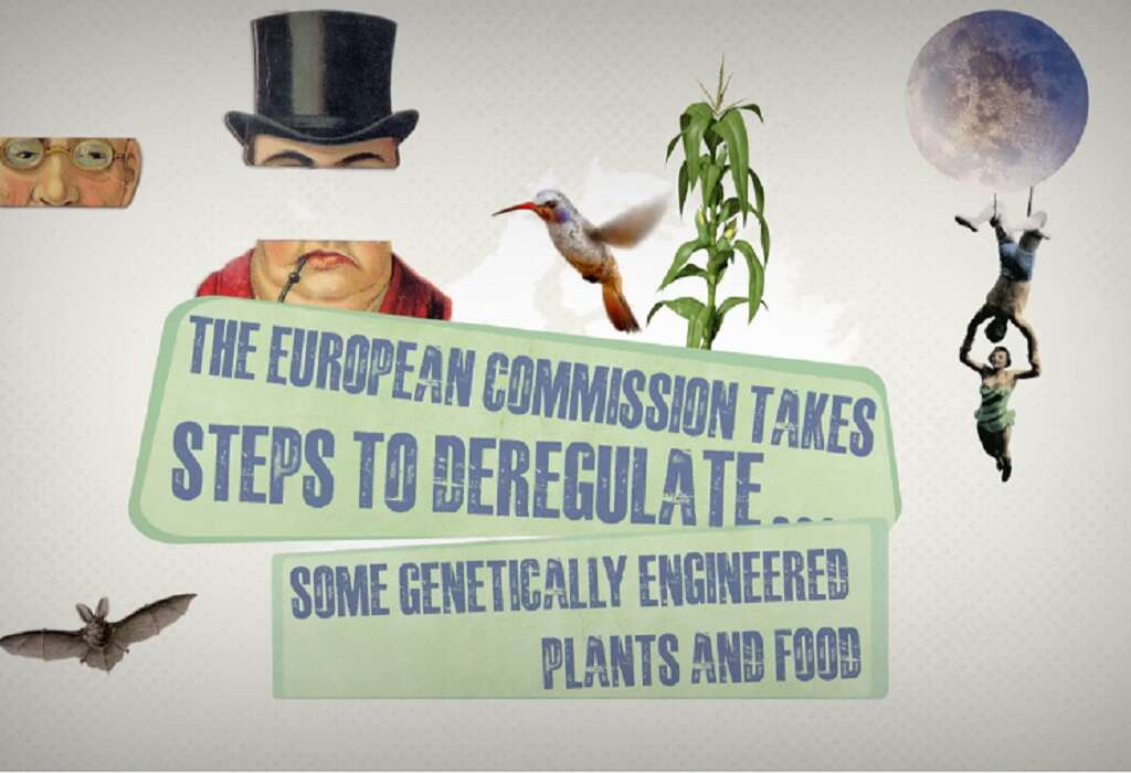 Geen nieuwe GGO's in de EU – Steun de petitie van VELT en Bioforum nu meteen!