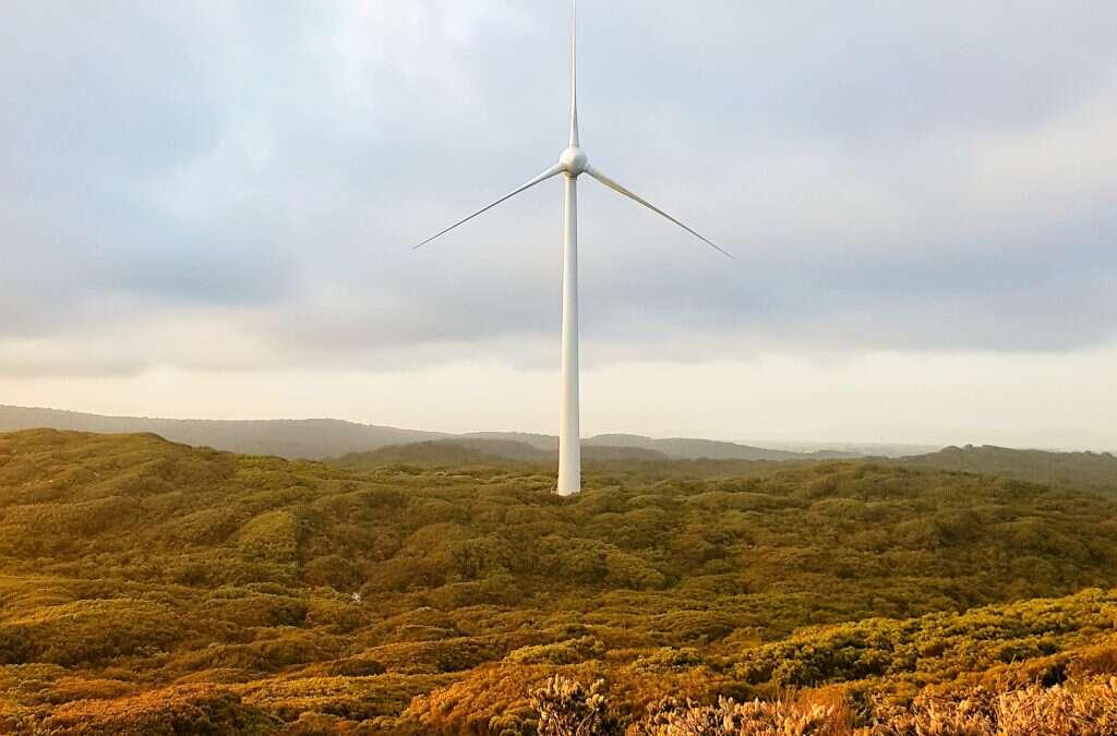 Hernieuwbare energie is een succesverhaal – interview met Jos Delbeke